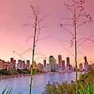 Brisbane City - Qld Australia by Beth  Wode
