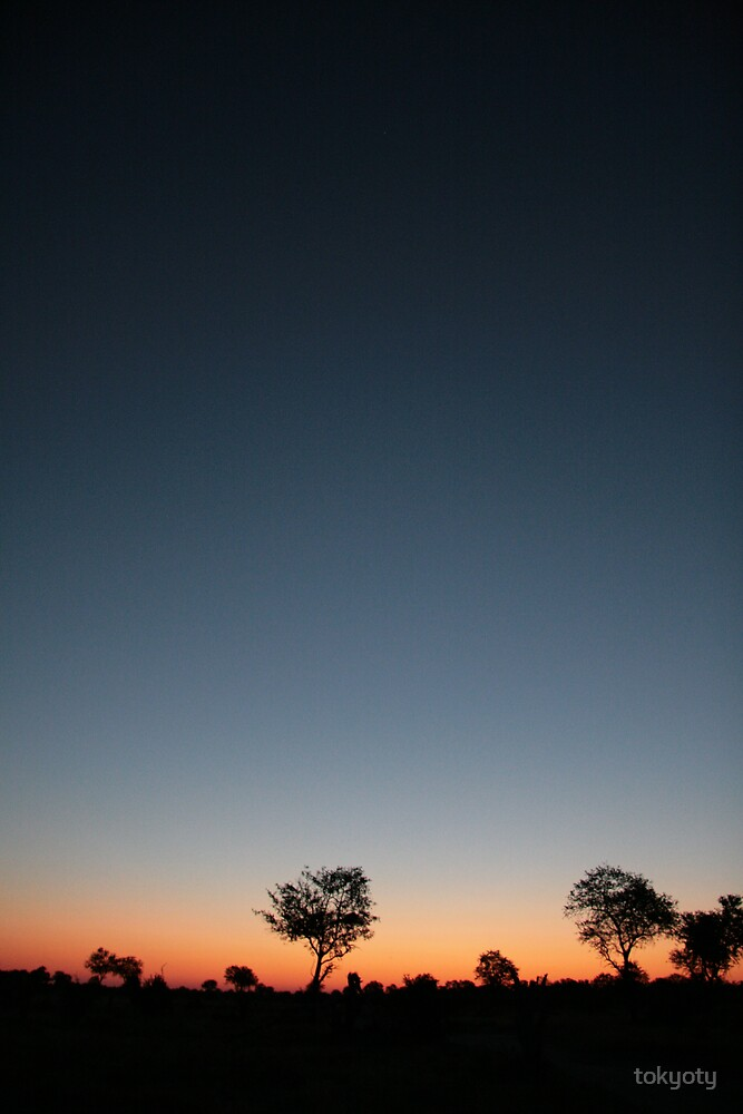 Sunset in botswana by tokyoty