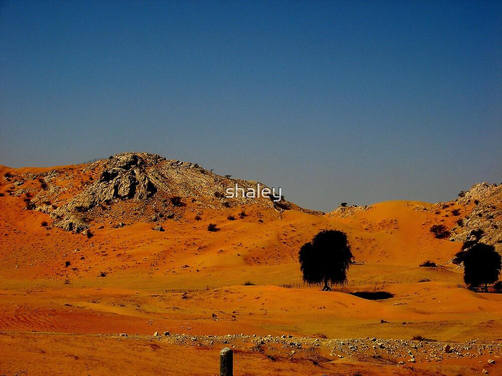 Omani Desert by shaley