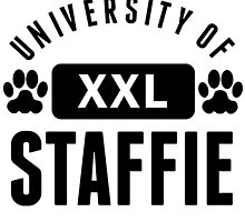 University Of Staffie by kwg2200