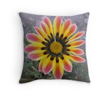 Deserted Beauty Throw Pillow