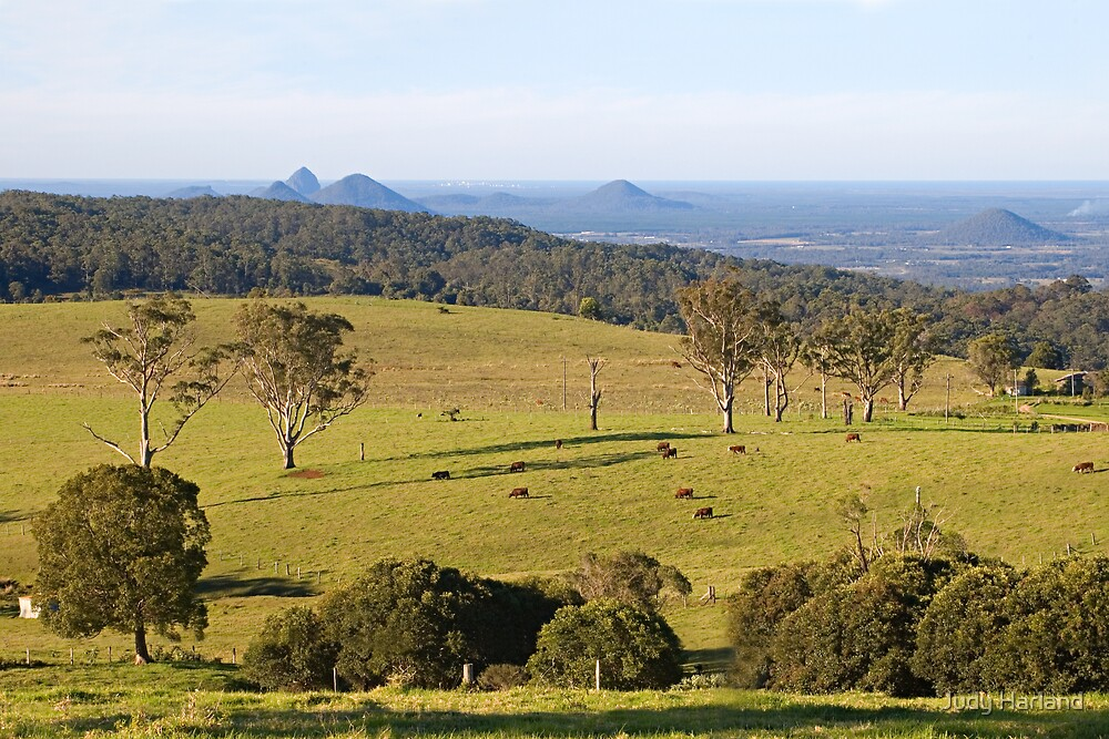 Mount Mee looking towards the Glasshouse Mountains by J Harland