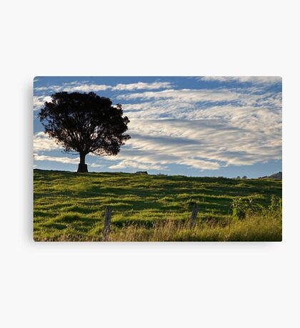 Tree & Clouds Canvas Print