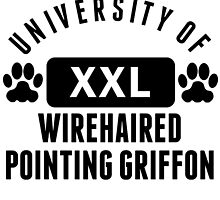 University Of Wirehaired Pointing Griffon by kwg2200
