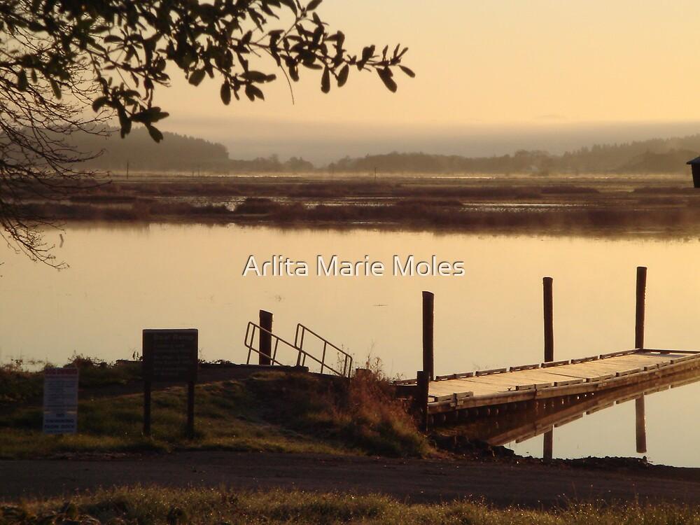 Scenic by Arlita Marie Moles