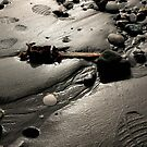footprints by maxi