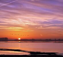 A brand new day by Adri  Padmos