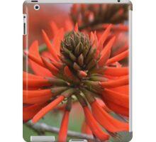 Coral Tree Flower iPad Case/Skin