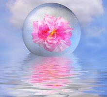 Rose globe by Annika Strömgren