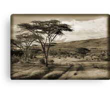 Happy Valley Canvas Print