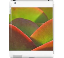 Backlit iPad Case/Skin