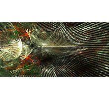 Grid Photographic Print