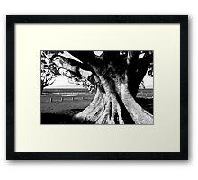 Under the Faraway tree Framed Print
