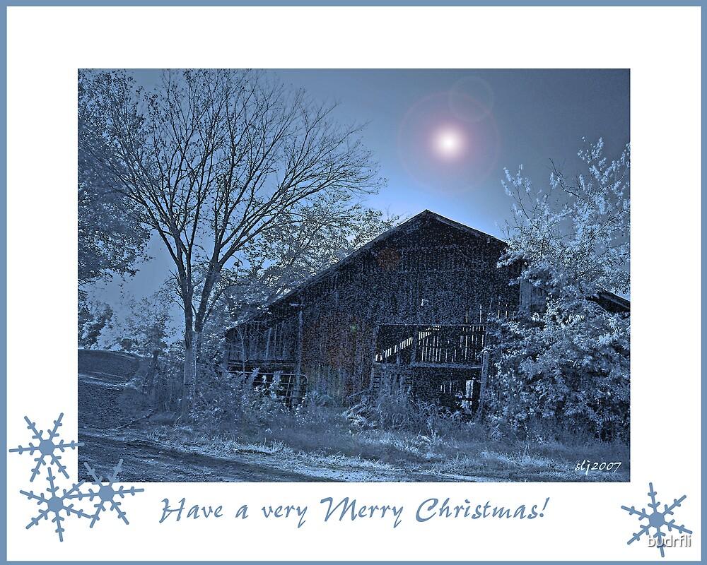 Moonlit Christmas by budrfli