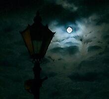Moon light by Hanae