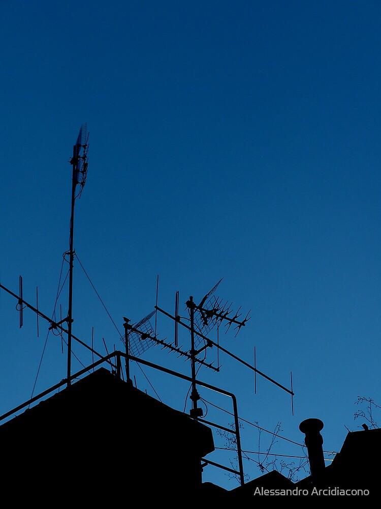 Antennas invasion by Alessandro Arcidiacono