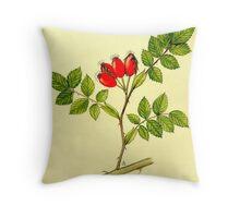 Wild Rose - Rosa canina berries Throw Pillow