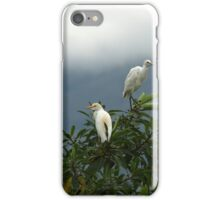Two Cattle Egrets in a Tree iPhone Case/Skin