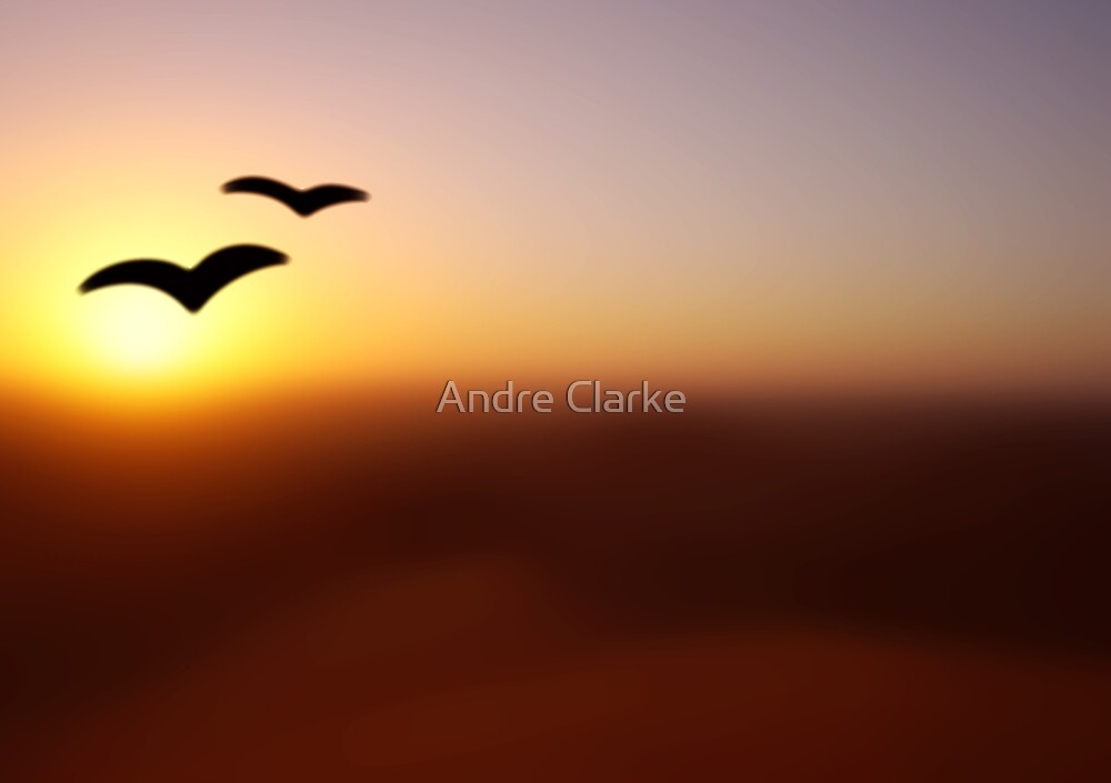 Into the Sunset by Andre Clarke