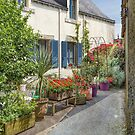 Rochefort en Terre, Brittany, France by Elaine Teague
