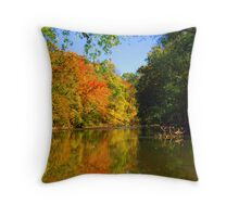 Foilaged Trees Near Calm Waters Throw Pillow
