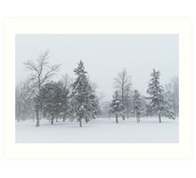 Snowstorm - Tall Trees and Whispering Snowflakes Art Print