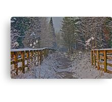 Frozen Winter Scene but where is Olaf? Canvas Print