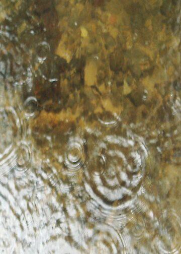 Rain by Arlita Marie Moles