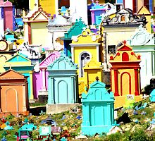 A colourful way to go by Nicholas Averre