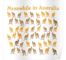 Meanwhile in AUSTRALIA with many kangaroos Poster