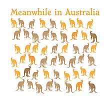 Meanwhile in AUSTRALIA with many kangaroos Photographic Print