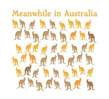 Meanwhile in AUSTRALIA with many kangaroos by jazzydevil