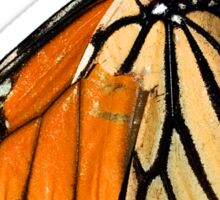 Monarch Butterfly closeup on a twig II Sticker