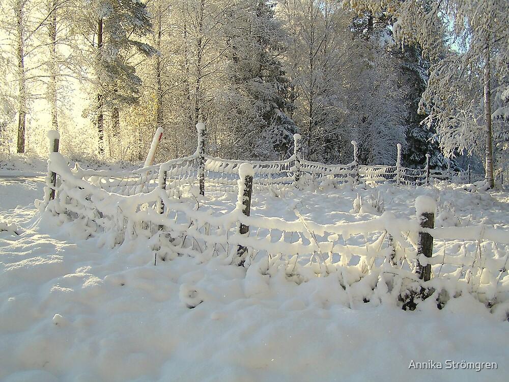 Winter sun by Annika Strömgren