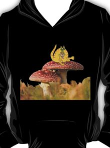 cat agaric? T-Shirt