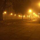 Walk in the Fog by Bernd Tschakert