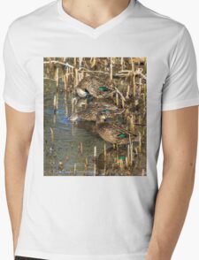Ducks at rest Mens V-Neck T-Shirt