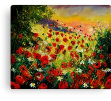 red poppies 56 Canvas Print