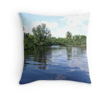 Powell Creek - North Fort Myers Throw Pillow
