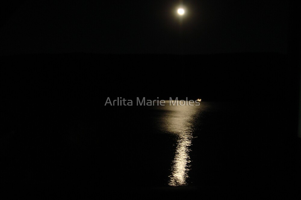 Moons Reflection Over Prinville Res. by Arlita Marie Moles