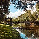 Sawgrass Bridge by Ginny Schmidt