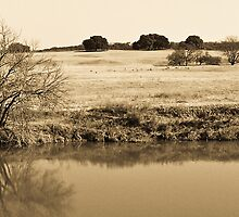 Plains de Brazos by Charles Dobbs Photography