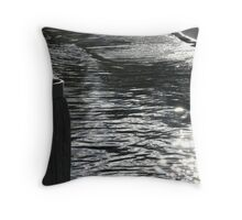 Afternoon waterside Throw Pillow