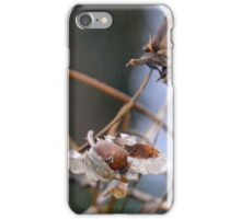 Withered Seeds iPhone Case/Skin