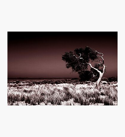 Swept Away Photographic Print