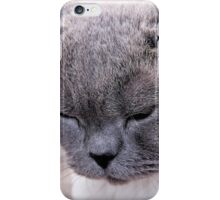 Purr-fection iPhone Case/Skin