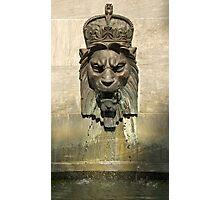 Lion Head Fountain II Photographic Print