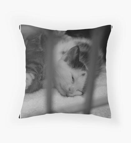 Caged cat Throw Pillow