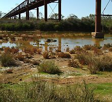 Argibuckle Bridge, Oodnadatta Track,Outback South Australia by Joe Mortelliti