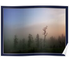 Morning mist in the forest Poster
